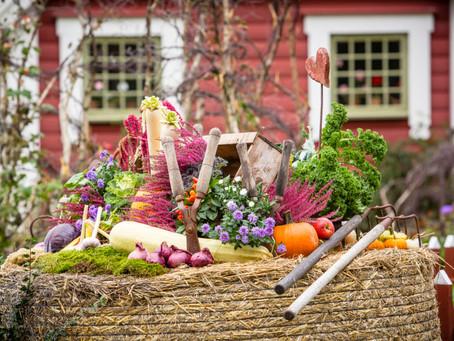 Hösten bjuder in till skördefester! The autumn invites to harvest festivals!
