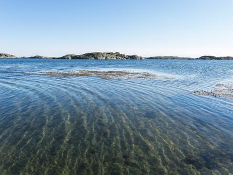 Njut av hav eller sjö när du är på utflykt med oss! // Enjoy the sea or a lake when on tour with us!