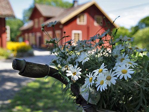 Sundsby-8_500_mrj.jpg