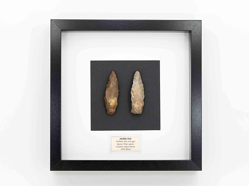 Neolithic tools presented in Frame
