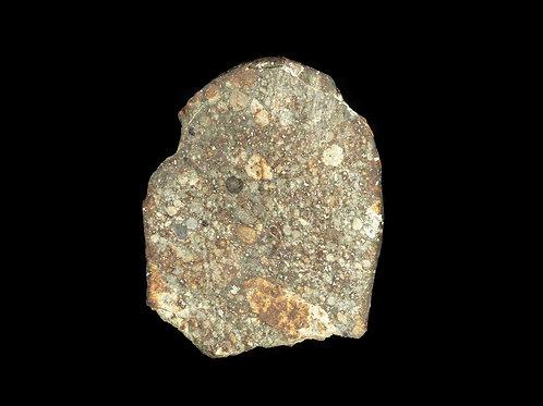 Meteorite NWA 869 Chondrite L4-6 7.8g