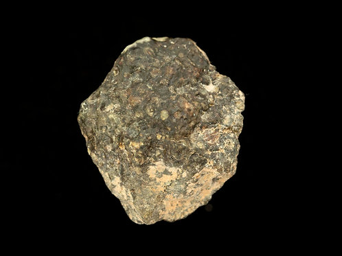 Carbonaceous chondrite meteorite CV3 3.8g
