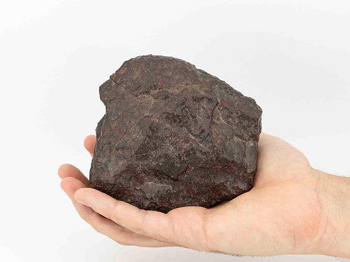 Ordinary Chondrite