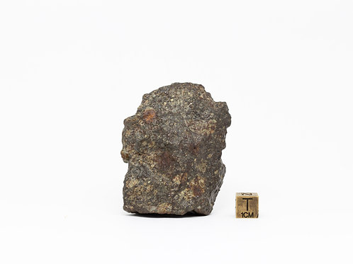 NWA Ordinary Chondrite