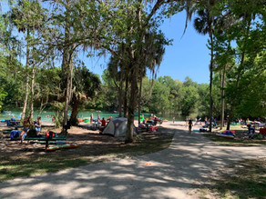 Florida Springs: Spending The Day At Alexander Springs