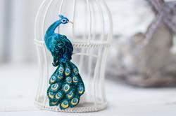 peacock_1_1_s