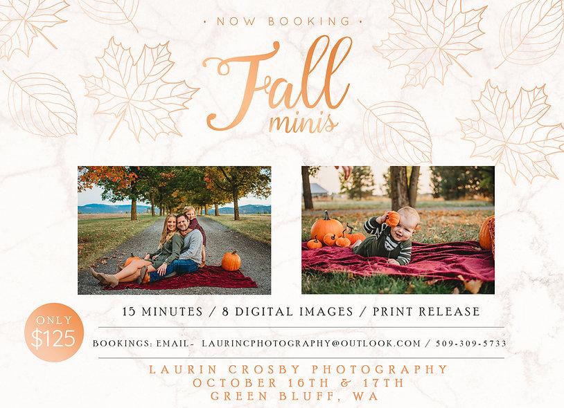Fall-rose-gold-mini-sessions.jpg