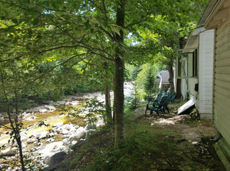 The river is just a stone's throw away from your cabin.