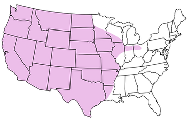 Coverage map.png