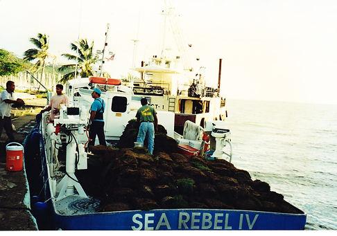 Sale of used crewboats, fishing boats, supply boats.Venta embarcaciones comerciales, barcazas, pesqueros, supply.