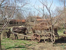 Rural property for sale in Bulgaria
