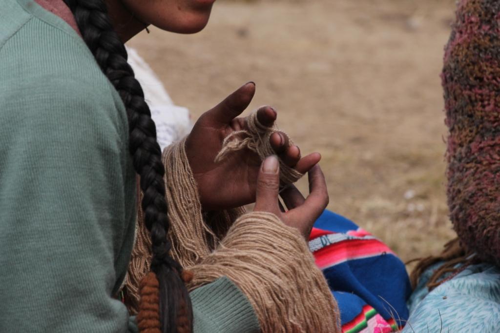 Femme filant de la laine d'alpaga