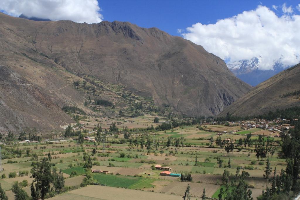 Terrasses agricoles d'Ollantaytambo (3).JPG