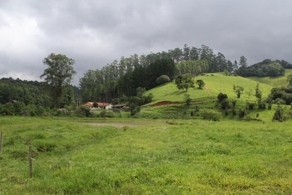 Santa Rosa de Lima.JPG