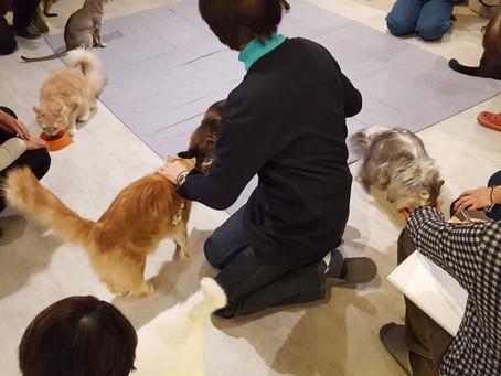 2月の動物スケッチ講座