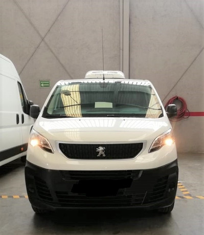 Peugeot Thermoking