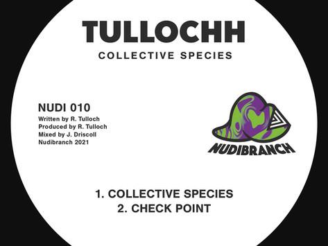 Premiere: Tullochh - Check Point [NUDIBRANCH]