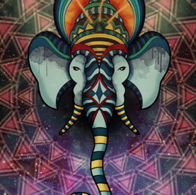 Electromagnetic Elephant