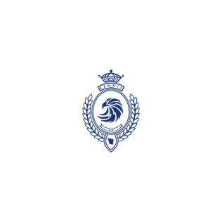 The Academy of Excellence Logo navy blue