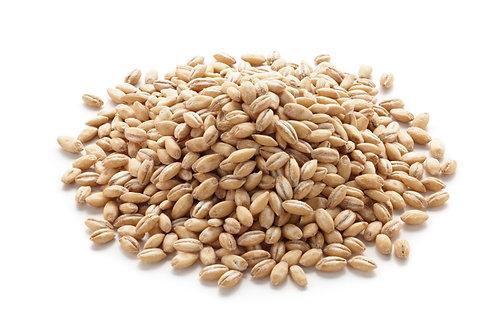 Pearl barley. zero waste bulk foods. plastic free. zero waste. horsham. Sussex