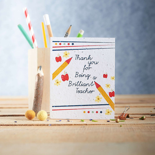 Thank you for being a Brilliant Teacher Wildflower Seed Card Front