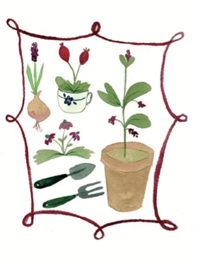 Gardening wildflower seeded card front. zero waste bulk foods.plastic free. online. horsham. sussex