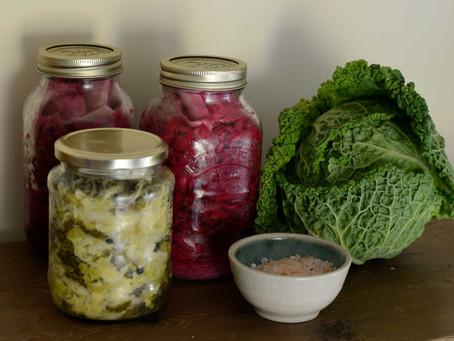 Fermentation – Easy Sauerkraut and Kombucha recipes