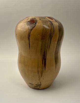 Curvy Norfolk Island Pine Vase