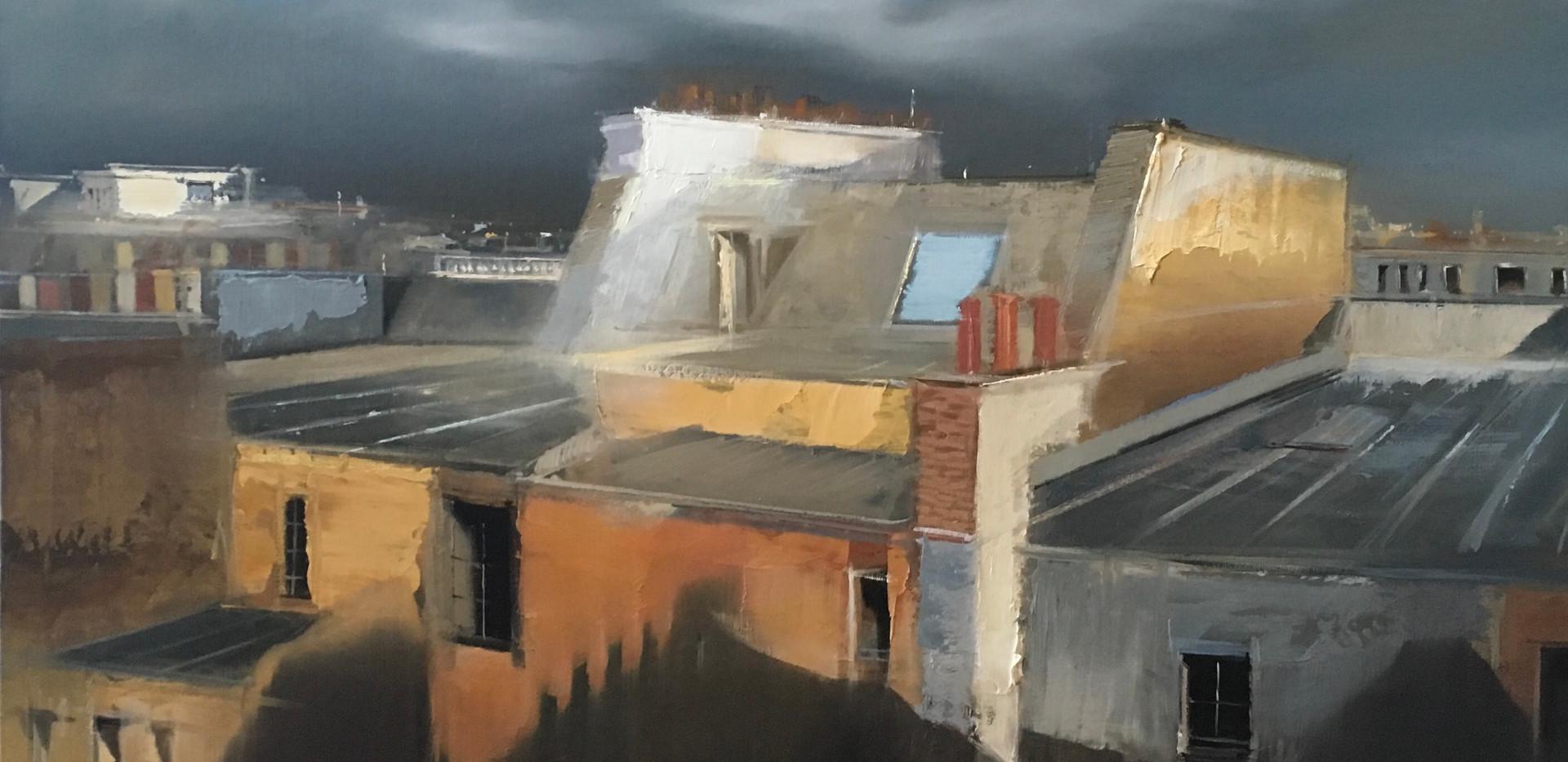 Les toits de Paris  100x81cm