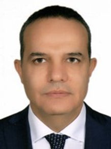 Ambassador Mehmet Kemal Bozay - picture.