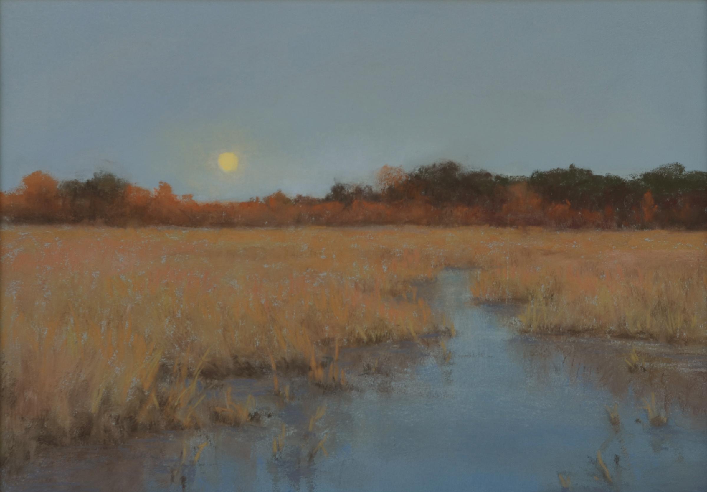 DLaRueMahlke_Marsh Moonlight_7.25x10