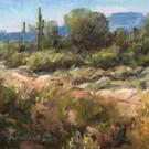 Arizona Arroyo