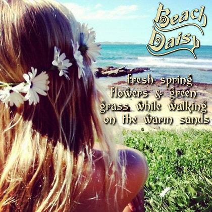 Beach Daisy