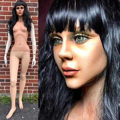 ~6067~ by DG Williams Mannequins