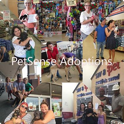 PetSense adoptions.jpeg