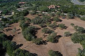 Tree Mulching Austin Texas