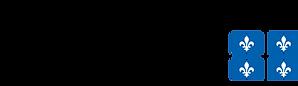 SAJ logo2.png