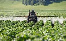 Agricultura2.jpeg