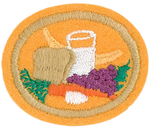 Nutrition Advanced Honor_clipped_rev_1.p