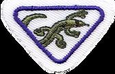 Lizard Award_clipped_rev_3.png