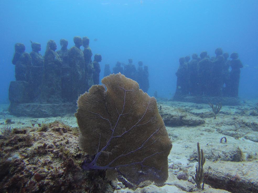 buceo_scuba_snorkel_diving_vivescuba_musa_02