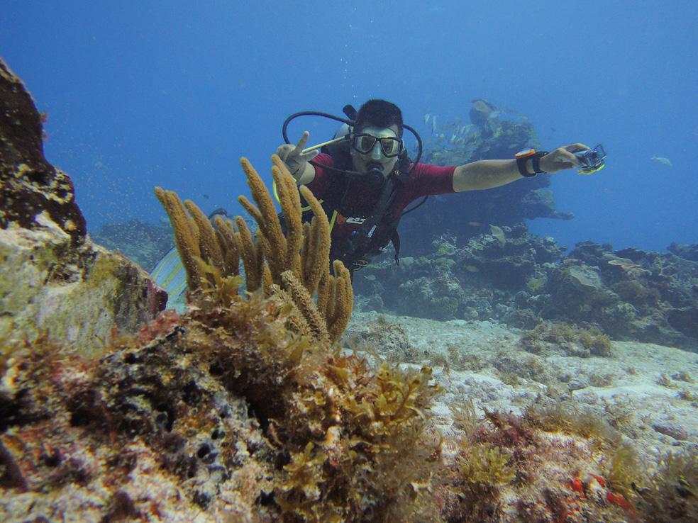buceo_scuba_snorkel_diving_vivescuba_ivan_03