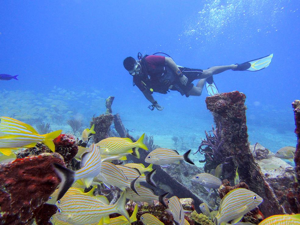 buceo_scuba_snorkel_diving_vivescuba_ivan_04