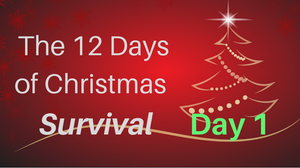 12 days of Christmas survival