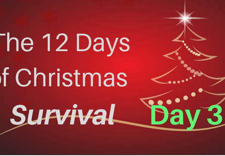 The 12 Days of Christmas Survival