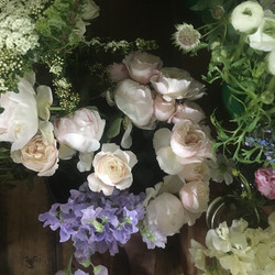 Scented English roses