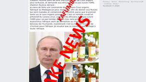 """FAKE NEWS: """"Vladimir Putin encomenda Chá do Madagáscar e pede África a não seguir OMS"""""""