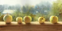 Яблоки из Комаровки