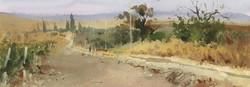 Дорога на виноградники
