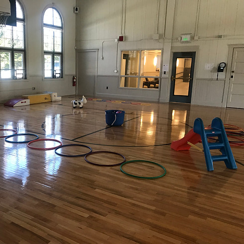 Vacation Open Gym Drop In FEB